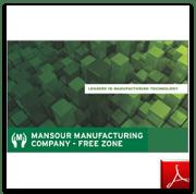 Free Zone Brochure