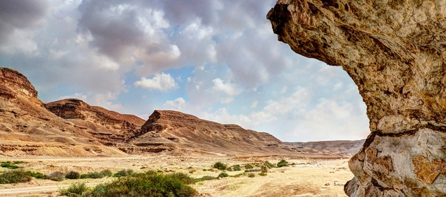 Wadi Degla Clean Up Campaign